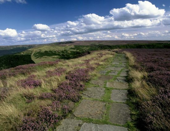 north_yorks_moor